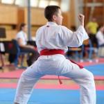 karate-42018-101