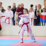 karate-42018-16