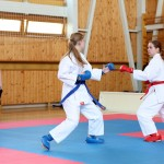 karate-42018-178