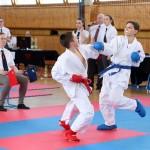 karate-42018-192