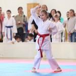 karate-42018-40