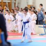 karate-42018-61